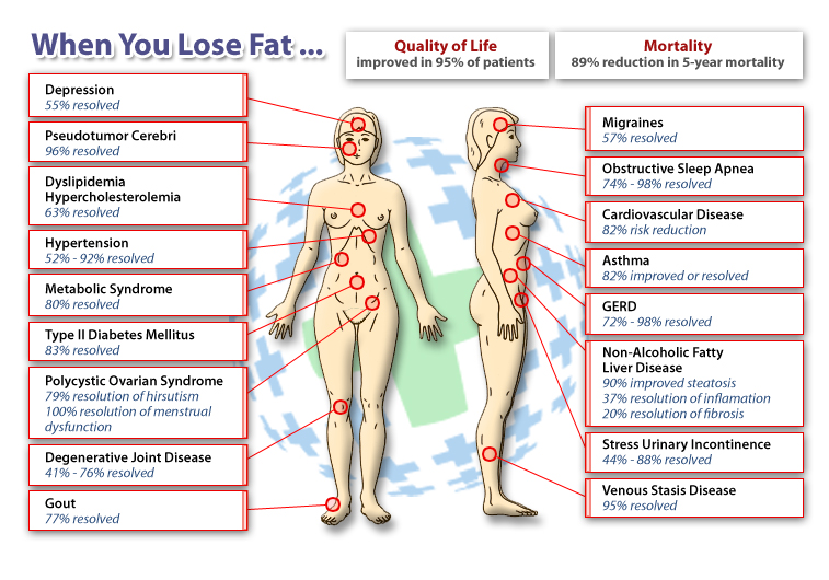 Lose Body Fat Chart If You T And Exercise
